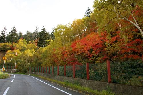 カミホロ荘前紅葉