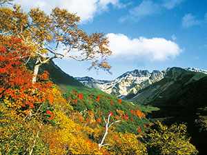 Mt.Tokachidake Autumn leaves Festival